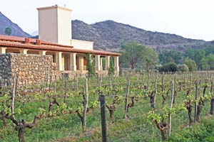 Cafayate Wine Resort