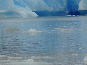 Argentine Iceberg 7