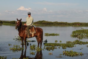 Horseback riding, Pantanal, Brazil