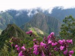 machu picchu - peru travel - vaya adventures