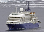 Quark's Sea Spirit in Antarctica