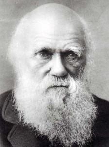 darwin old
