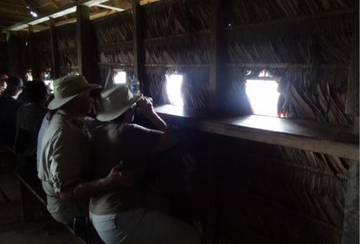 peru birding blind