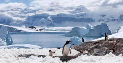 Antarctica Expedition Vessels List