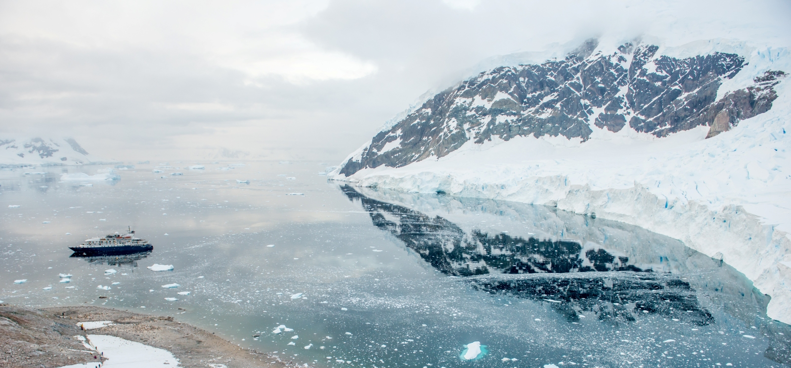 Antarctica Tours & Cruises  Premier Antarctica Travel Agency