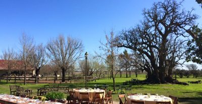 Estancia El Ombu_outdoor dining (photo credit El Ombú de Areco)