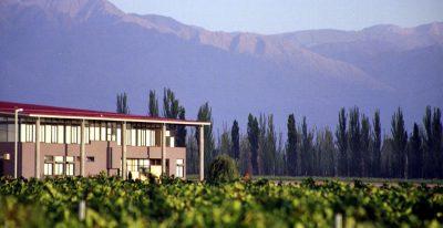 Club Tapiz_winery