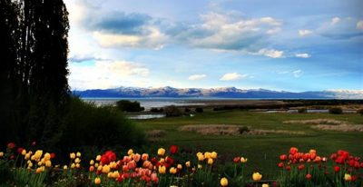 Galpon del Glaciar_scenery