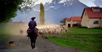 Nibepo Aike_sheep herding