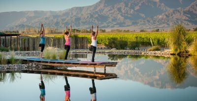 The Vines_yoga