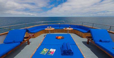 Beluga - Deck