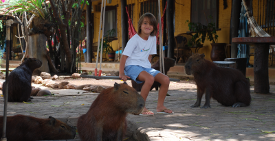 Araras Lodge_visiting capybaras