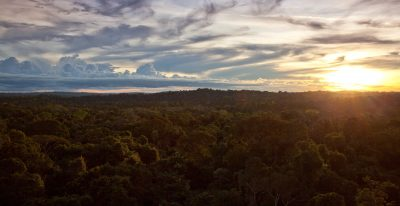 Cristalino Jungle Lodge - Sunset at canopy tower