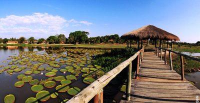 Hotel Pantanal Norte_walkway