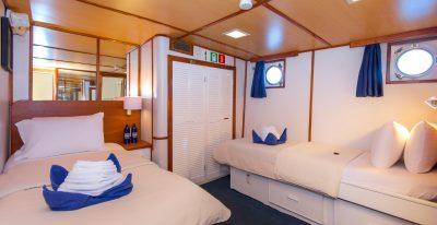 Beluga - Cabin 2