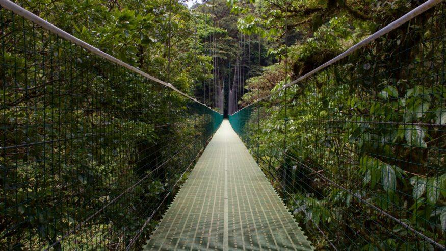 Costa Rica - Monteverde Hanging Bridges