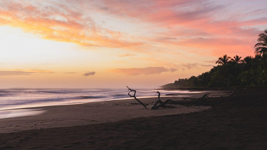 Costa Rica - Tortuguero - Beach