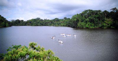 La Selva Lodge - view of the lake