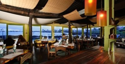 Red Mangrove_dining