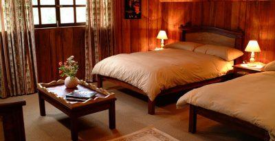 Sachatamia Lodge_guest room