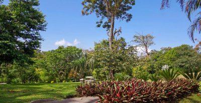 Fondavela Monteverde - Gardens