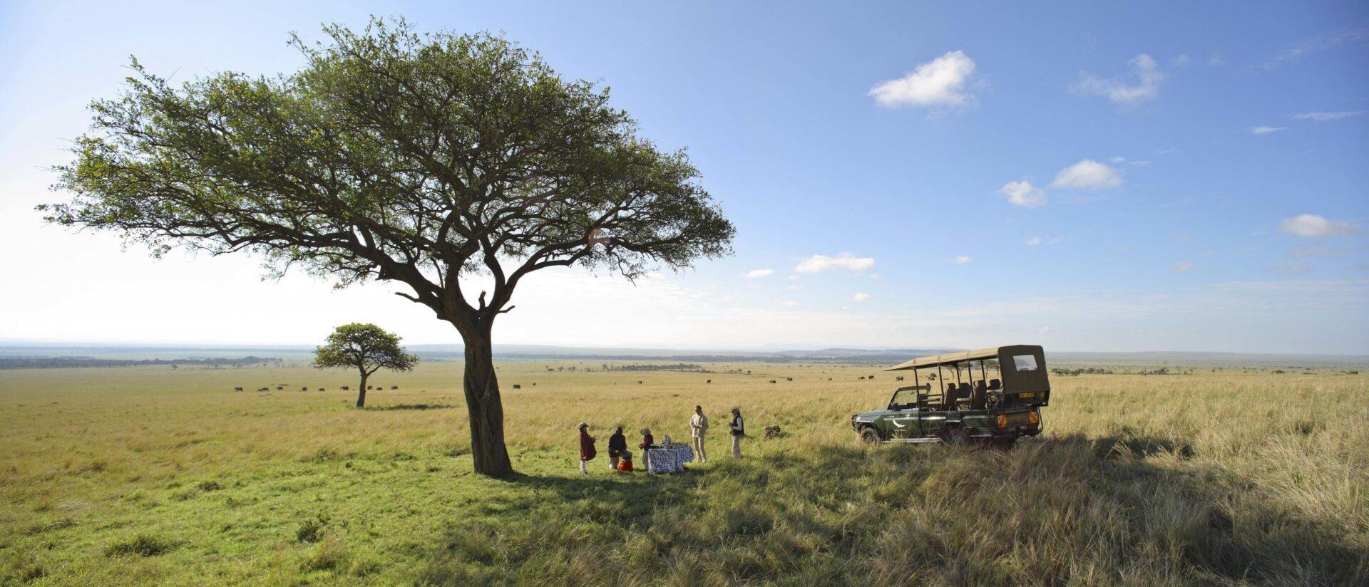 Kichwa Tembo_safari