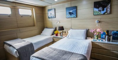 Passion - Twin Cabin