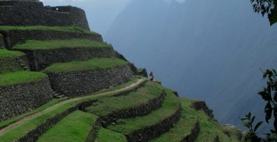 Inca Trail Grass Steps