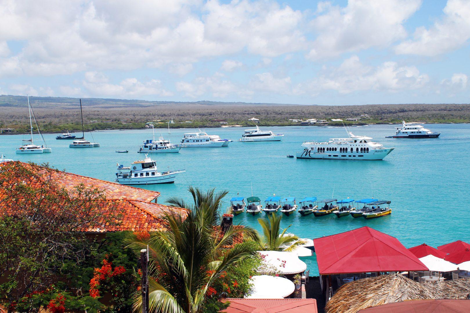Ships in Puerto Ayora