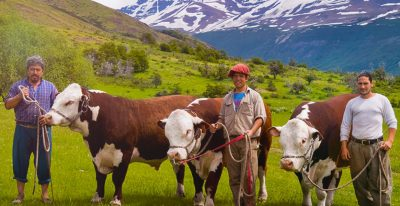 El Calafate Patagonian Gauchos