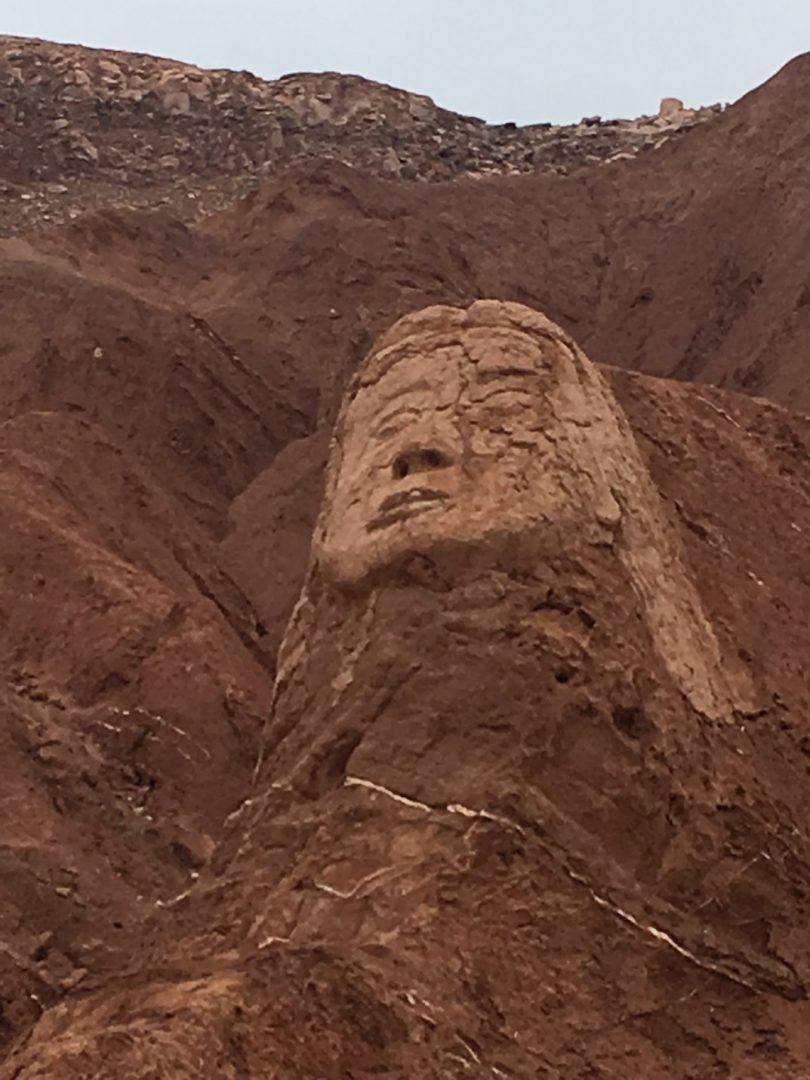 Atacameño head